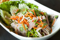 Thai style spicy sour pork salad. Royalty Free Stock Photo