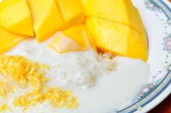 Thai style tropical dessert, glutinous rice eat with mangoes Royalty Free Stock Image