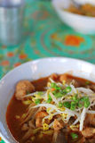 Thai Style Vegetarian Tom Yam Noodles Royalty Free Stock Photo