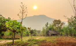Thai style wooden hut and sunrise backgrounds Royalty Free Stock Image