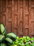 Thai style wooden wall. Design of a Thai style wall, made of Teak wood Stock Photos