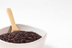 thai svart rice Arkivfoton