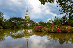 Thai Temple. Gold in twilight Royalty Free Stock Image