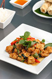 Thai Tofu Dish with Appetizers Royalty Free Stock Images