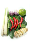 Thai Tom Yum spices Royalty Free Stock Images