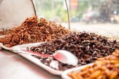 Thai traditional food grasshoppers,larvae stock photos