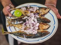 Thai traditional food Spicy fried Mackerels royalty free stock photography