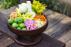 Thai traditional Herbal balls and herbs Stock Image