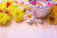 Thai traditional jasmine garland and Colorful flower in water bowls decorating and scented water, perfume, marly limestone. Pipe gun on wood background for Royalty Free Stock Images