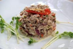 Thai Tuna salad Royalty Free Stock Photography