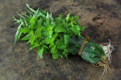Thai vegetable Royalty Free Stock Photos