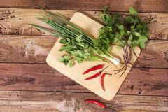 Thai vegetables. Scenery of Thai vegetables showing on wooden board Stock Image