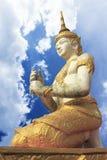thai vinkel Arkivfoton