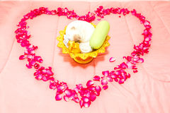Thai wedding ceremony and red rose leaf in heart shape on bed Stock Image