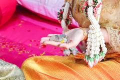 Thai wedding ceremony. Stock Photography