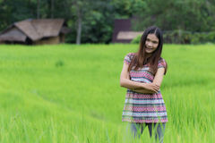 Thai Woman Enjoy in Field Doi inthanon, Maeglangluang Karen Stock Images