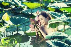 Thai woman Farmer  collecting lotus in garden, thai lifestyle Stock Photos