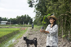 Thai woman planting tree and growing vegetable drop in hole at g Stock Photo