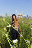 Thai woman and pomeranian with turbine in cosmos field, Muangkae Royalty Free Stock Image