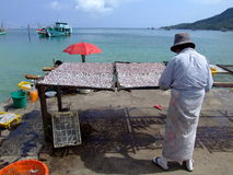 Thai woman preparing seafood, Thailand Royalty Free Stock Photos
