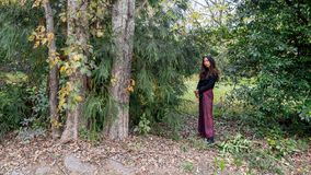 Thai woman standing in forest next to trees in sarong. In autumn as leaves are changing color royalty free stock photography