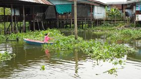 A Thai woman travels by boat on a canal near Bangkok stock video footage