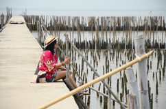 Thai women sitting alone on the walkway bridge in Mangrove forest Royalty Free Stock Photos
