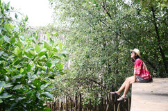 Thai women sitting alone on the walkway bridge in Mangrove forest Stock Images