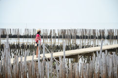 Thai women standing alone on the walkway bridge in Mangrove forest Royalty Free Stock Photography