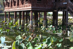 Thai wooden temple architecture on the lotus pond at wat Thung S Royalty Free Stock Image
