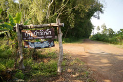 Thai words either side of the forest, overgrown road signs.  Royalty Free Stock Photos