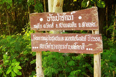 Thai words either side of the forest, overgrown road signs.  Stock Photography