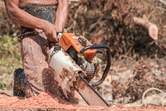 Thai worker cutting trunk with chainsaw Royalty Free Stock Photo