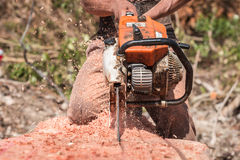 Thai worker cutting trunk with chainsaw Royalty Free Stock Photos
