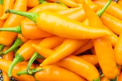 Thai Yellow Chilli Long , Thai chili pepper is very hot and flavorful, royalty free stock photography