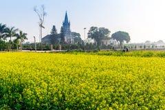 THAIBINH, VIETNAM - 31 décembre 2014 - une église catholique à l'intérieur d'un jardin de Wintercress Photos stock