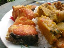 Thaifood Immagini Stock