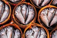 thaifood dello sgombro delizioso Immagine Stock