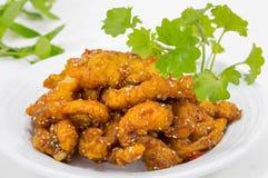 Thailändische Art Fried Chicken Chill im Öl Tom yum Lizenzfreie Stockfotografie