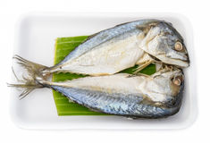 Thailändische gedämpfte Fische Winkels des Leistungshebels zu Lizenzfreie Stockfotos