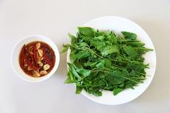 Thailändische Küche und Lebensmittel, Draufsicht von frischem Margosa oder Blätter und Blüte Neem gedient mit süßer Soße Lizenzfreies Stockfoto