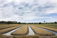 Thailändische Leute bereiten Land für Plantagenanlage und -gemüse vor Lizenzfreie Stockfotos