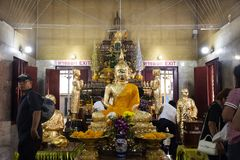 Thailändische Leute respektieren das Beten für die Segnung von Statue Luang Phor Pak Daeng Buddha bei Wat Prommanee in Nakhon Nay lizenzfreie stockfotografie