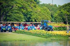 Thailändische Leute und Touristen reiten die Straßentrambetrachtung um den königlichen Garten Rama 9 Lizenzfreies Stockfoto