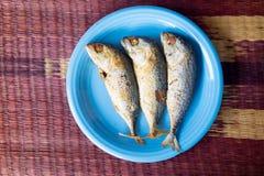Thailändische Makrele gebraten in der blauen Platte Stockbilder