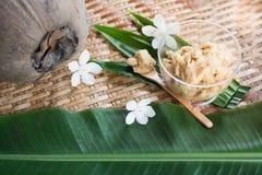 Thailändische Nachtischbestandteile stockfoto