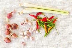 Thailändische Nahrungsmittelwürze Lizenzfreies Stockbild