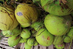 Thailändische süße Kokosnuss Lizenzfreie Stockfotos