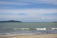 Thailändischer übender Sport der Athleten und der Ausländerleute und Spielen des Kiteboardings oder des Seedrachens im Ozean in R stockfotografie