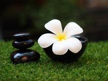 Thailändischer Badekurortfelsen und Blume Badekurort, Thailand Stockbilder